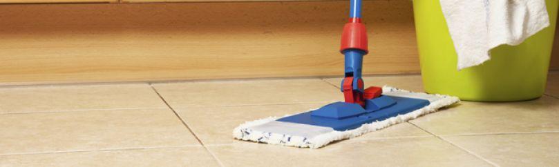 producto de limpieza para suelos de gres II